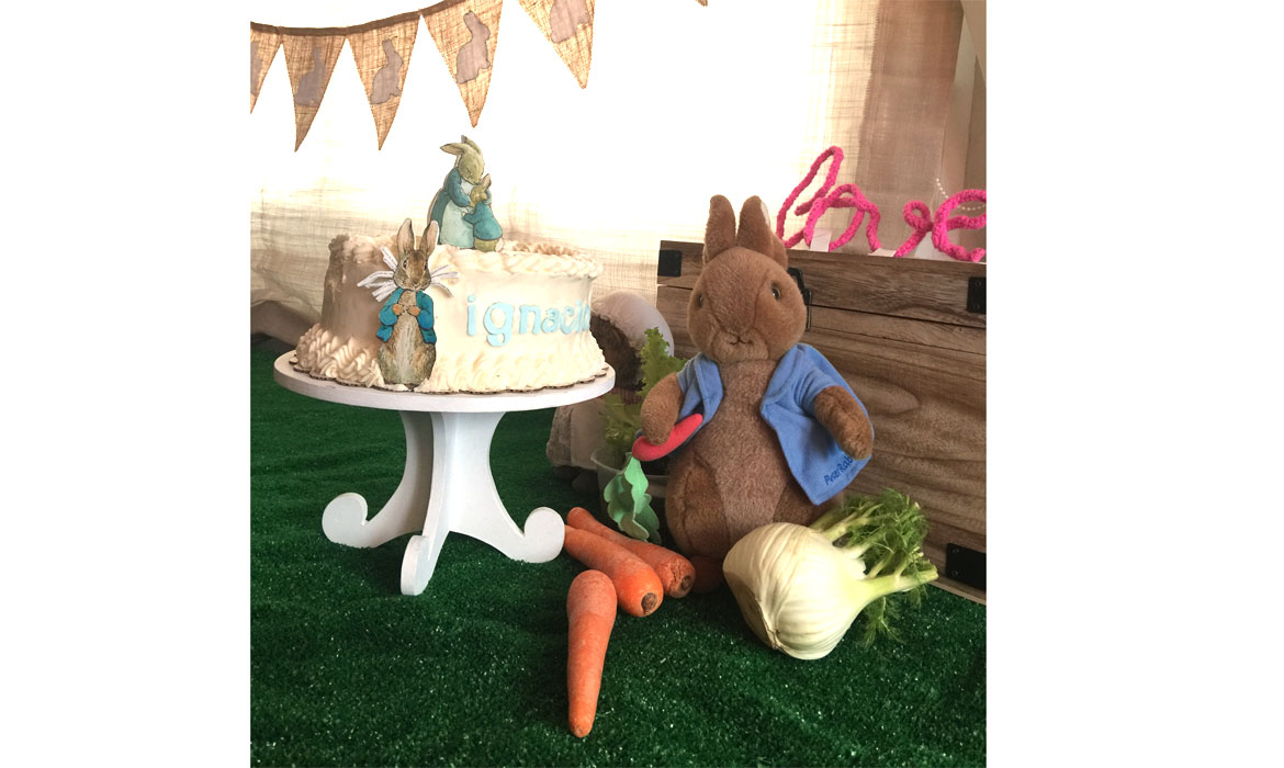 Baby Shower conejo